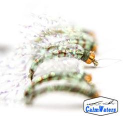 Amettiera per la pesca all' agone con testa ramata, costolatura ramata e corpo in filato verde fluorescente con codine e ali in glitter. Lenza pronta all'uso con cinque chironomi, a norma per tutti i maggiori laghi italiani.